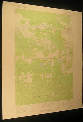 Newberry Michigan Maki & Kaks Lake 1977 vintage USGS original Topo chart map