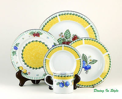 Tienshan, Trieste, 5 Piece Place Setting, SUPERB to MINT Condition!