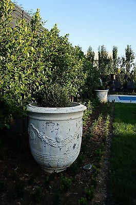 Oversize Anduze Style White Garden Planter Pots URNS | Statement Pieces