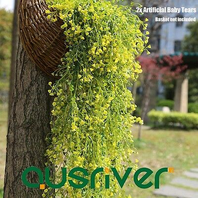 New 2X Artificial Baby Tears Plant Fake Fern Leaves Hanging Vine Vertical Garden