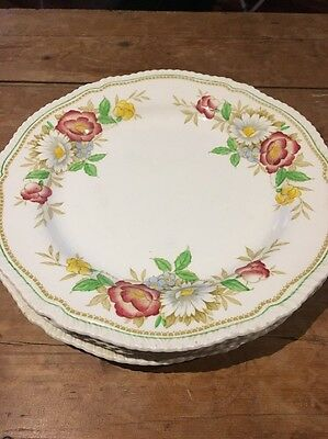 Antique Field Rose China Plates