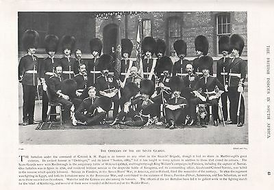 1900 ANTIQUE PRINT-BOER WAR-OFFICERS OF 1st SCOTS GUARDS