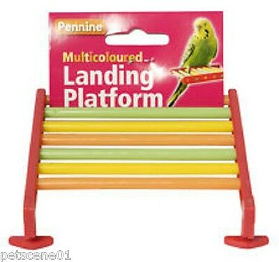 Pennine Multi Coloured / Multicoloured Bird Landing Platform Budgie Canary