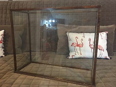 Beautiful Victorian Taxidermy Glass And Wood Display Unit