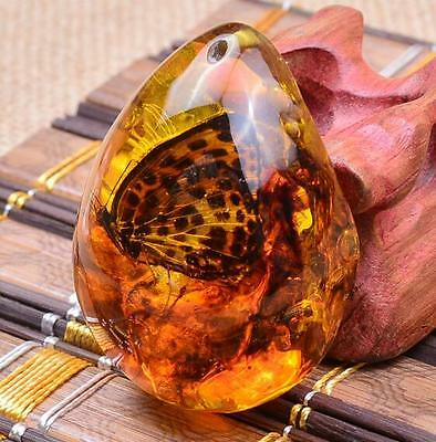 Beautiful Butterfly Amber Resin Amber Butterfly Insect Stone Pendant Necklace ♫