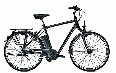 e bike raleigh dover impulse r xxl 8g 17 ah 28 zoll wave. Black Bedroom Furniture Sets. Home Design Ideas