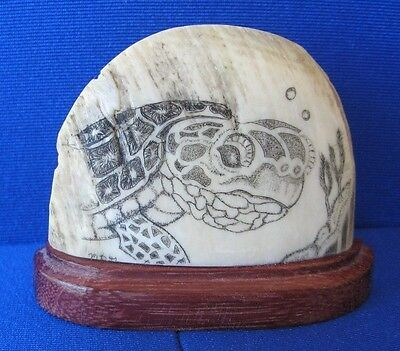 Scrimshaw sea turtle scene hand done one of a kind