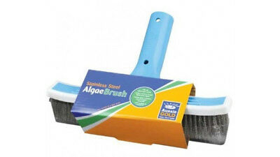 Aussie Gold Stainless Steel Pool Algae Brush 25cm