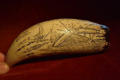 "faux scrimshaw  ""The Bark Veronica""   great collectable,  Shop retail.. £24 ++++"