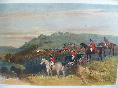 Hand Coloured Hunting engraving, 'The Debut'