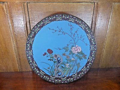 EXCELLENT ANTIQUE Japanese CLOISONNE MEIJI large FLORAL CHARGER - 12""