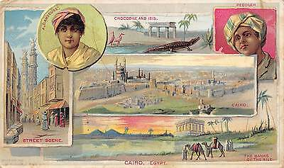 Arbuckle Bros Coffee New York 1891 Victorian Advertising Trade Card Cairo Egypt