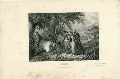 Don Pascal's convoy in Mexico ca. 1844 scarce old engraved view print