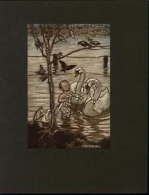 Swans Helping Adorable Child Tangled Kite 1906 old vintage color print