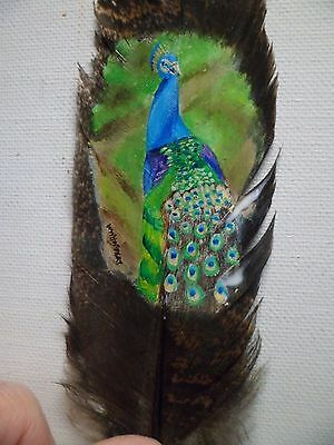 PEACOCK- Hand painted rare turkey feather, by artist W. W. Hoffert