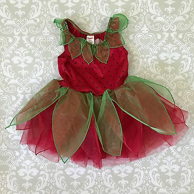 Gymboree Girl Sz 2T 3T Butterfly red berry Fairy Costume Leotard Dance