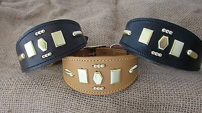 Greyhound collar leather with emblems.