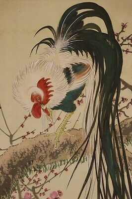 """JAPANESE HANGING SCROLL ART Painting """"Chicken and Blossoms""""  #E4960"""