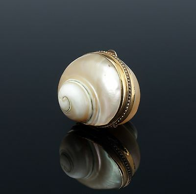 Rare Snuffbox Snails Casing 1840 Mother of Pearl Snuffbox