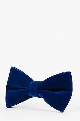 Mens Marc Darcy Designer Electric Blue Velvet Bow Tie
