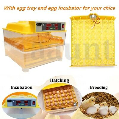 Digital Chicken Eggs Incubator Temperature Control Automatic Hatcher Turner