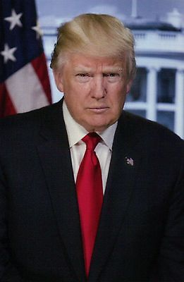 Official Portrait of United States President Donald Trump White House - Postcard