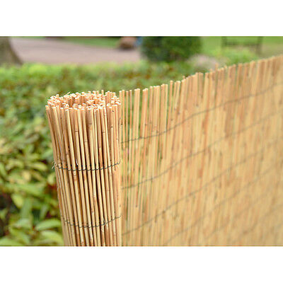 Panana 4M Natural Peeled Reed Screening Roll Garden Screen Fence Fencing Panel