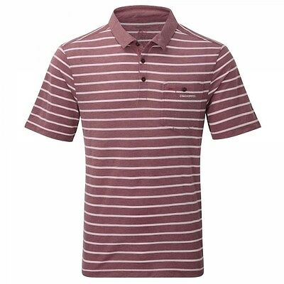 Craghoppers Mens Gilles Nosilife Insect Repellent Polo T Shirt in Red Stripe