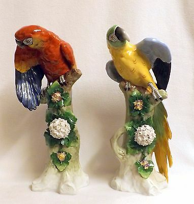 Sitzendorf Porcelain Dresden, Fabulous and Colourful Pair of Macaws