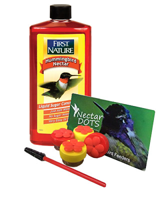 Handheld Hummingbird Feeder Kit- Everything You Need to Hand-Feed Hummingbirds