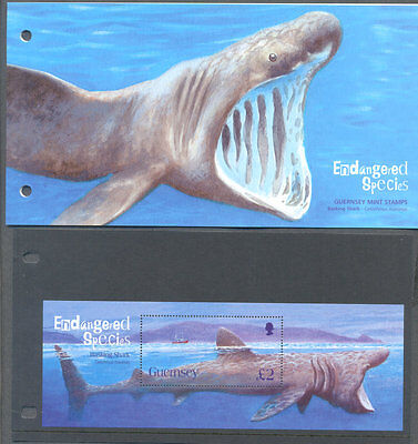 Guernsey-Basking Shark min sheet and Presentation pack mnh (22005)