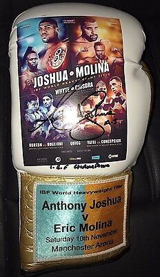 EXCLUSIVE Limited Edition Anthony Joshua Signed Boxing Glove World Champion COA