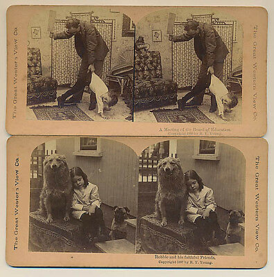 12 x Original Stereoviews - The Great Western View Co.