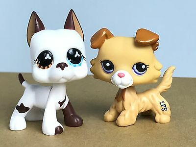 2PCS Littlest Pet Shop LPS Toys White Great Dane Dogs Yellow Colle Collections