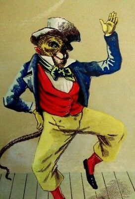 Victorian Trade Card Anthropomorphic Monkey Dancing Suit Top Hat Bow-Tie Y3