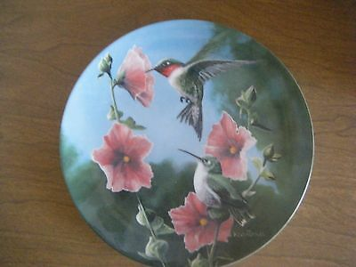 """""""The Hummingbird"""" 7th  Birds of Your Garden Collectors Plate by Kevin Daniel"""