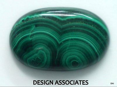 Malachite Cabochon 23.30 X 15 Mm Oval Cut Great Green Color  All Natural