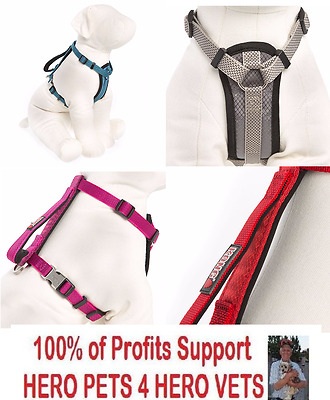 New Kong Traffic Handle Chest Plate Harness Red Blue Grey Pink Small Med LG XL