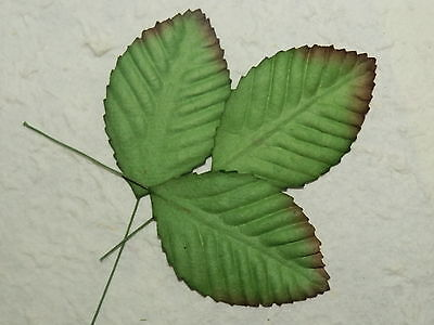 50 x 60mm Mulberry Paper ROSE LEAVES MPL10J Embellishment Scrapbooks Cards Craft