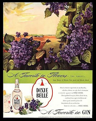 "Original 1946 ""dixie Belle Gin"" Violets State Flower Of Illinois Art Print Ad"