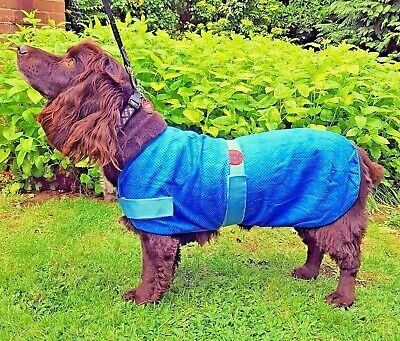PetFace Dog Cooling Coat Summer Heat Travel Holiday Evaporation Cool Cold Jacket