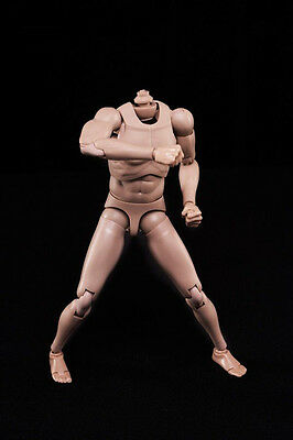 1/6 Scale Male Body with Highly Cost-Effective Edge Caucasian Skin  MX02-A Tone