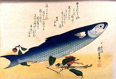 Set of 2 Repro Japanese Woodblock Fish Prints Pictures by Ando Hiroshige