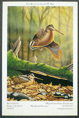 Pa Pennsylvania Game Commission WTFW 2004 Woodcock Lithograph Print Card