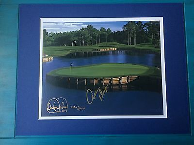 "Allen Doyle Signed ""17th at Sawgrass"" Danny Day Matted Limited Ed. Lithograph"