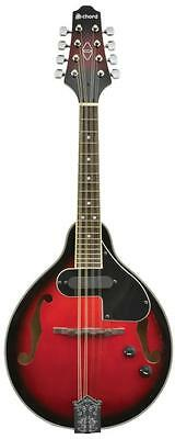 Chord 174.500 CEM28 Rosewood Fingerboard Linden Laminate Electric Mandolin - New