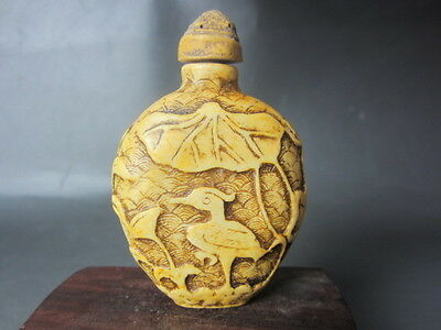 Collection of ancient Chinese bird and flower pattern  -Bone snuff bottles &h15