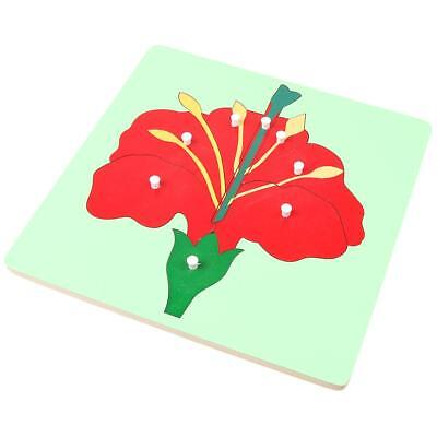 Wooden Flower Baby Jigsaw Puzzles Early Learning Educational Toy Montessori