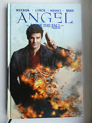 Angel: After The Fall Volume 4 Graphic Novel (Hardback)