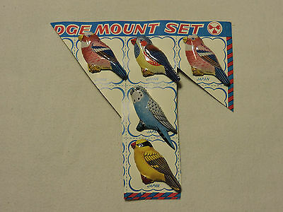 Set Of 5 Vintage Tin Litho Bird Pins Made In Japan